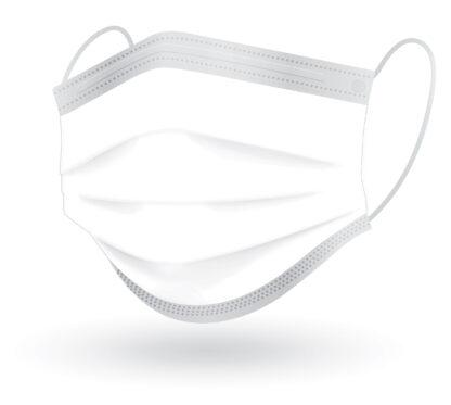 Reynard Face mask